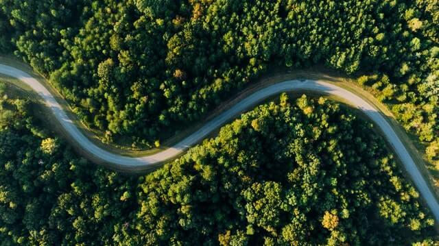 Road creating a form of habitat fragmentation.