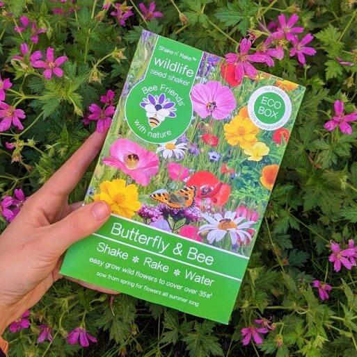 Wildflower seeds- a tool to rewild your garden