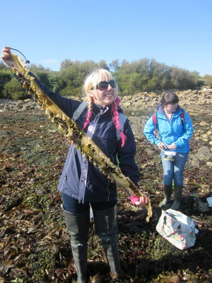Person holding seaweed for citizen science project